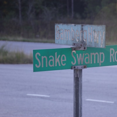Snake Swamp Rd says it all!!